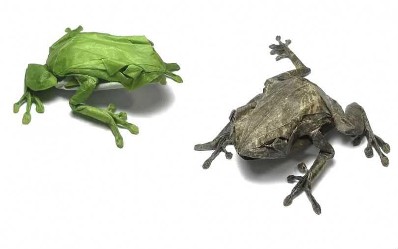 Как вырезать лягушку